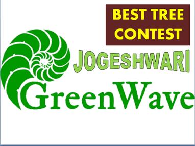 Best tree contest