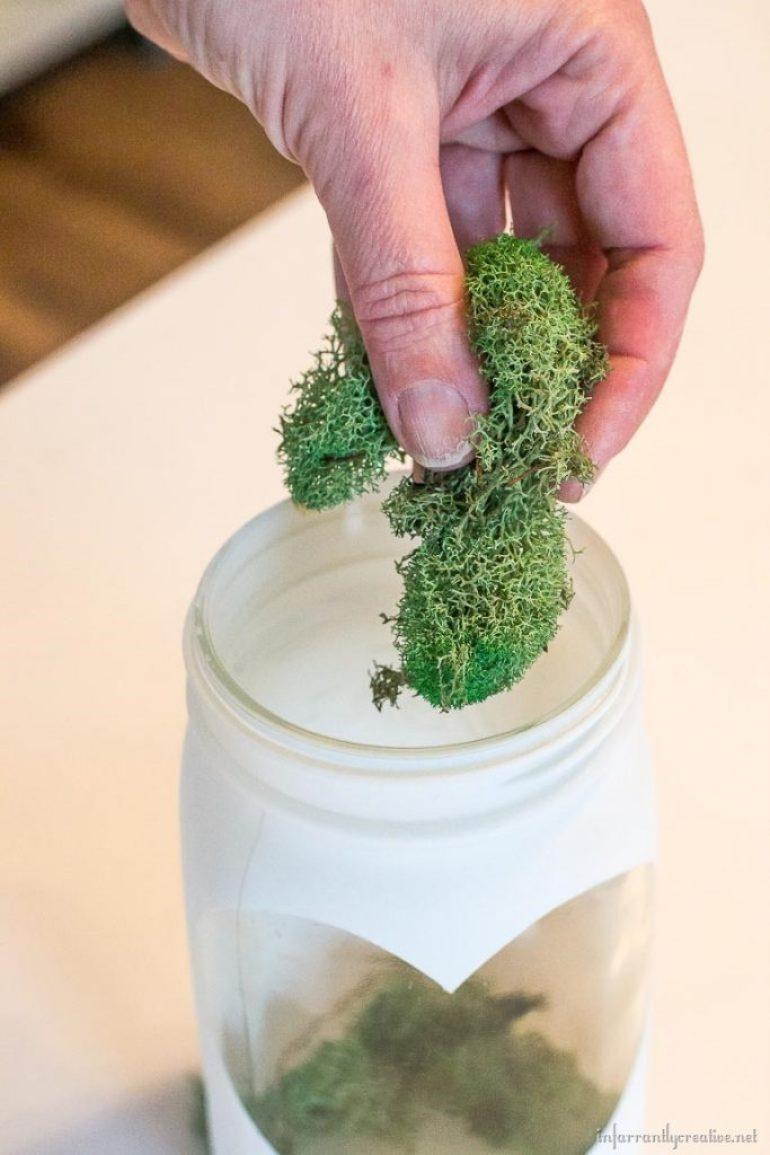 moss in a mason jar