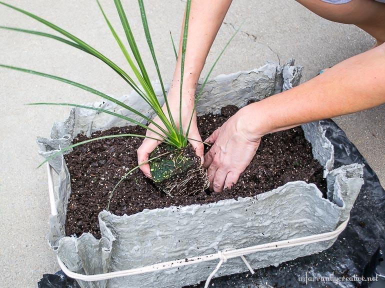 planting-flowers-in-concrete-pots