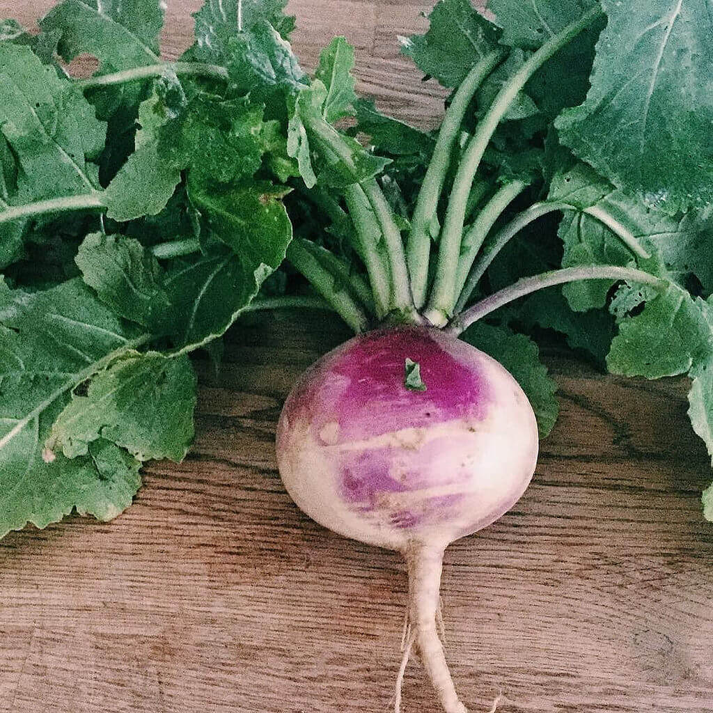 a pretty turnip on a cutting board