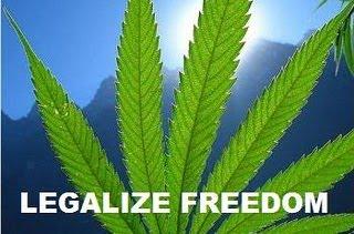 CannabisTi