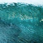 Crítica: Águas Rasas