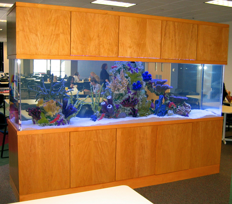800 Gallon Marine Aquarium Free Standing With Faux Reef