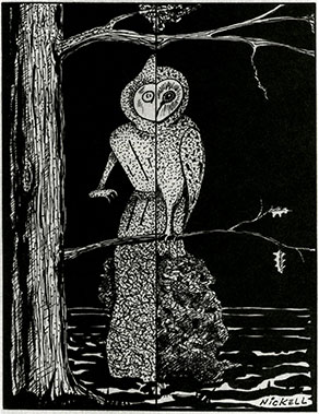 The Flatwood Monster