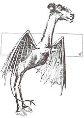 The Jersey Devil - Mysterious Creatures