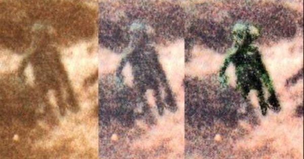 Ilkley Moore Alien Creature