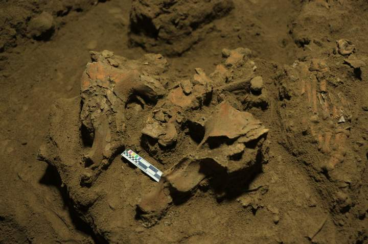 The position of Bessé's bones, such as her pelvis and one foot (on the right of the photo), suggests that she was buried in a fetal position.