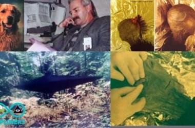 Alien Encounter Of Jonathan Reed