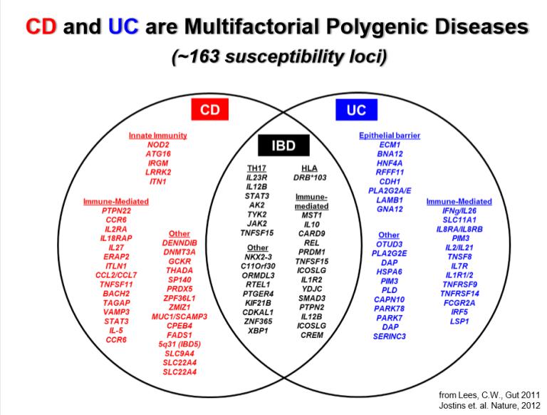 genes involved in IBD