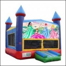 Castle w/Princess Banner