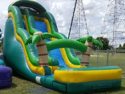 Water Games     Inflate the Fun Tropical Wave Slide