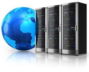 Web Hosting 1000