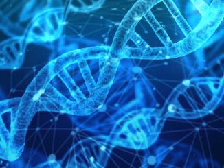 Moderne DNS-Analysen zur Aufklärung von Straftaten