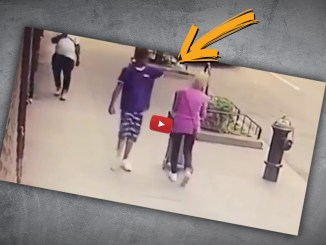 Ein 100fach zuvor verhafteter Afroamerikaner boxt grundlos eine Oma K.O.