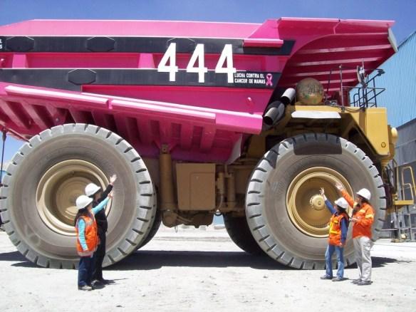Presentando orgullosos el camión pintado en Minera alumbrera color rosa.