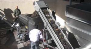 Instalaciones Viña Hualfín
