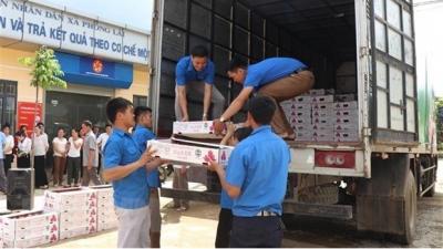 Exportation du premier lot de fruits vers l'UE dans le cadre de l'EVFTA