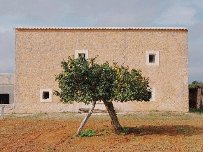 """El tercer lugar fue para Magdalena de Jonge Malucha (España) con """"Be like Wes Anderson"""" (Sé como Wes Anderson). La foto se tomó con un iPhone 7 Plus en Santa Agnès de Corona, Ibiza, España."""