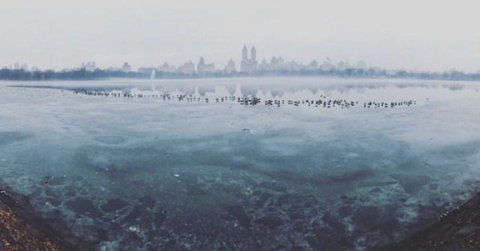 """El segundo puesto es para Burcu Ozturk (EE.UU) con """"Frozen Central Park"""" (Central Park helado) que se tomó con un iPhone 7 en el Central Park, en Nueva York, Estados Unidos."""