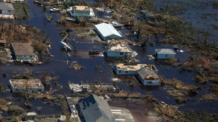 El huracán Dorian dejó más que muertes, destrucción y sufrimiento en su paso por las islas Bahamas. (Adam DelGiudice / AFP)
