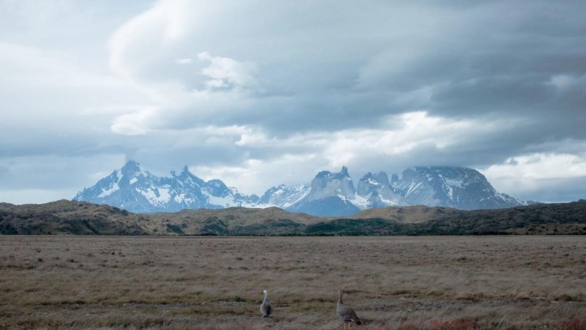 """Los desafíos de la Argentina frente al calentamiento global: entre la inacción y la necesidad de """"cambios sin precedentes"""""""