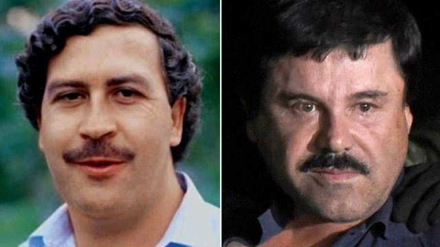 """La estructura vertical y centralizada que construyeron los grandes capos como Pablo Escobar y Joaquín """"El Chapo"""" Guzmán"""