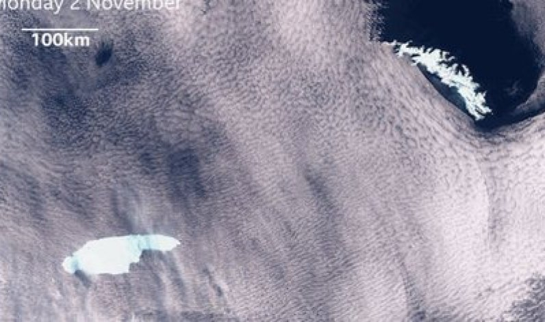 """El mayor iceberg del mundo amenaza el ecosistema de Georgia del Sur. Se trata del """"A-68"""", que abarca más de 5.800 kilómetros cuadrados de hielo flotante"""