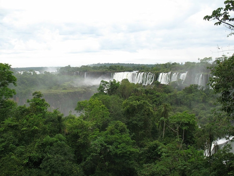 La selva misionera cobija atentay diversaa las Cataratas del Iguazú (Wikipedia)