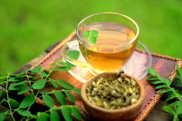 Las hojas se pueden consumir frescas o secas,en comidas o como infusión. En EEUU predomina el suplemento en polvo.
