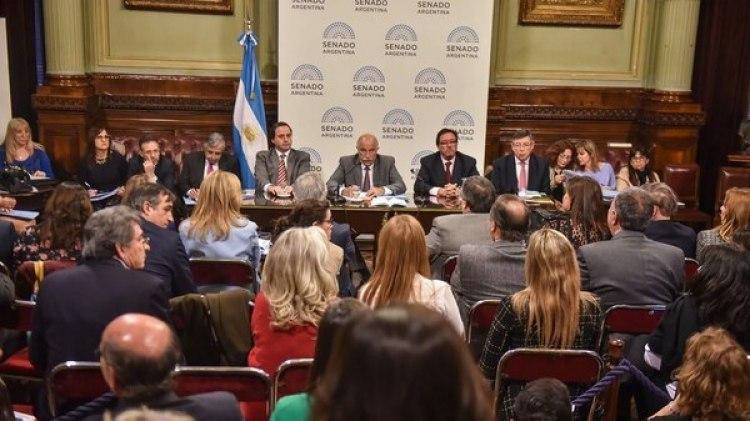 El proyecto no obtuvo dictamen y se debatirá tal cual llegó de Diputados (Guillermo Llamos)