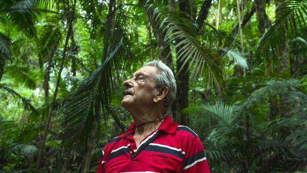 Antonio Vicente compró el terreno en 1973 para recuperar la vegetación perdida (Tommaso Protti/The Guardian)