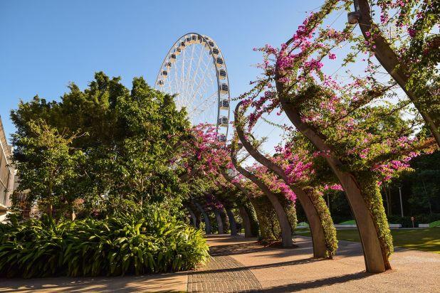 """Burdamente apodada """"Brisvegas"""", la ciudad más poblada del estado australiano de Queensland ha sido considerada durante mucho tiempo como una ciudad rural descomunal, un vacío cultural eclipsado por Sydney y Melbourne"""