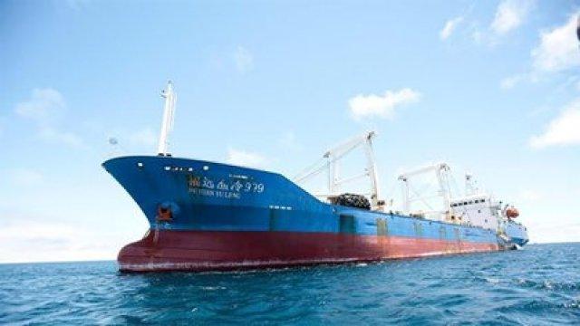 Barcos piratas de pesca chinos se dirigen a Chile para depredar sus mares (EFE/ José Jácome/ Archivo)
