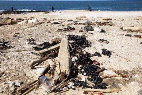 Las playas fueron cerradas para los transeúntes, pero se lanzó una campaña de limpieza (REUTERS/Amir Cohen)