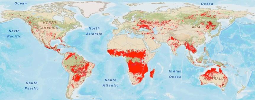 Figura 1. Área quemada en el mundo durante 2018 según el satélite MODIS de la NASA. El 70% de los incendios se dan en la sabana africana, rodeando al bosque tropical de la cuenca del Congo. Sistema EOS (LANCE) del Sistema de Información y Datos de Ciencias de la Tierra de la NASA