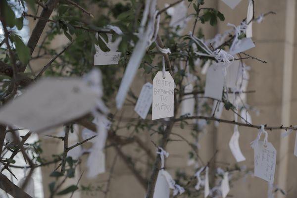 """""""Árbol de los deseos"""", de Yoko Ono, en el Museo Nacional de Arte Decorativo"""