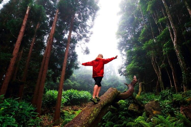 Las Azores formalizaron la candidatura a la certificación de destino de turismo sostenible, siendo el primer archipiélago del mundo en perfilarse para tener el sello del Consejo Global de Turismo Sostenible (Shutterstock)