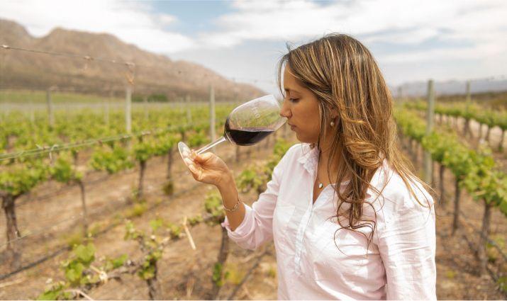 los mejores vinos 2020