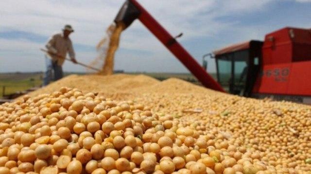 La producción agrícola del ciclo 2018-2019, superó las 140 millones de toneladas de granos y oleaginosas