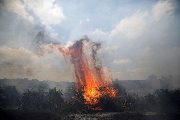 Las cometas de los palestinos han provocado decenas de incendios en Israel (Reuters)