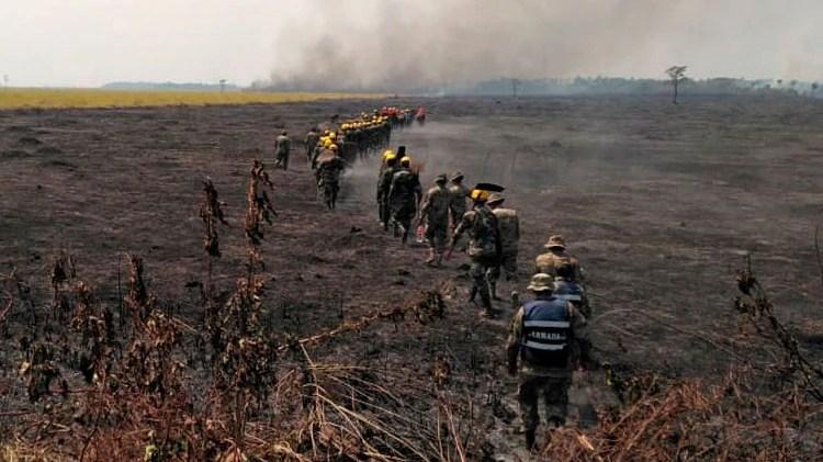"""Los incendios forestales arrasaron unas 2 millones de hectáreas en Bolivia. Pero el gobierno no ha querido declarar el """"desastre nacional"""": (AFP)"""