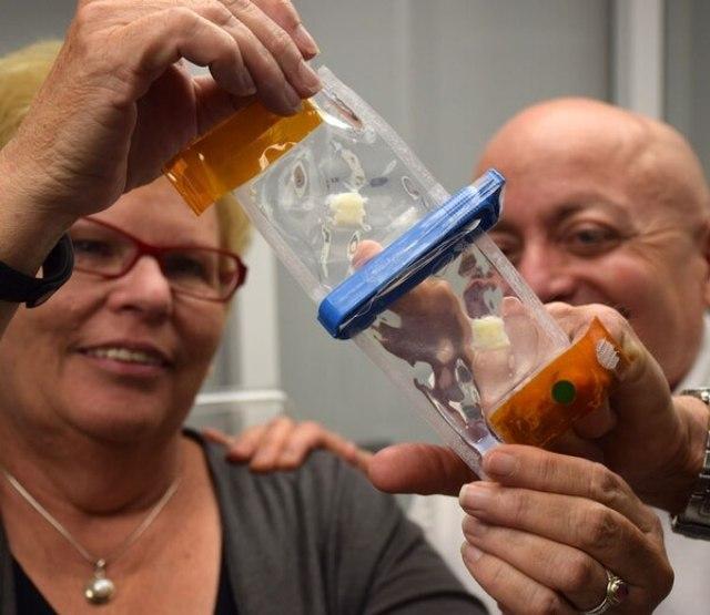 Joan Nichols y Joaquín Cortiella esperan que haya transplantes de pulmones artificiales a humanos en el curso de la década. (UTMB)