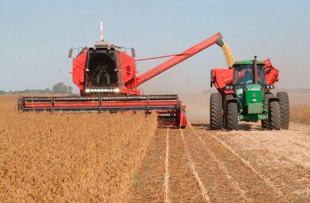 Aumentan las estimaciones de cosecha de soja de la presente campaña, Así lo precisó el último informe de la Bolsa de Comercio de Rosario (EFE)