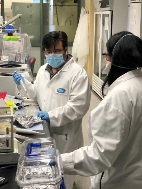 Pfizer había anunciado a fines de abril la aceleración de los tiempos de su investigación para desarrollar una vacuna contra el nuevo coronavirus, que podría estar lista para ser usada en casos de emergencia a partir del otoño boreal (REUTERS)