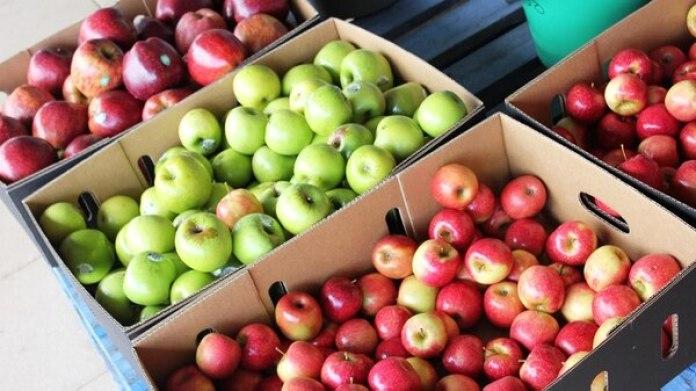 La manzana roja fue el alimento con menos participación (10,2%) del productor en la suma final