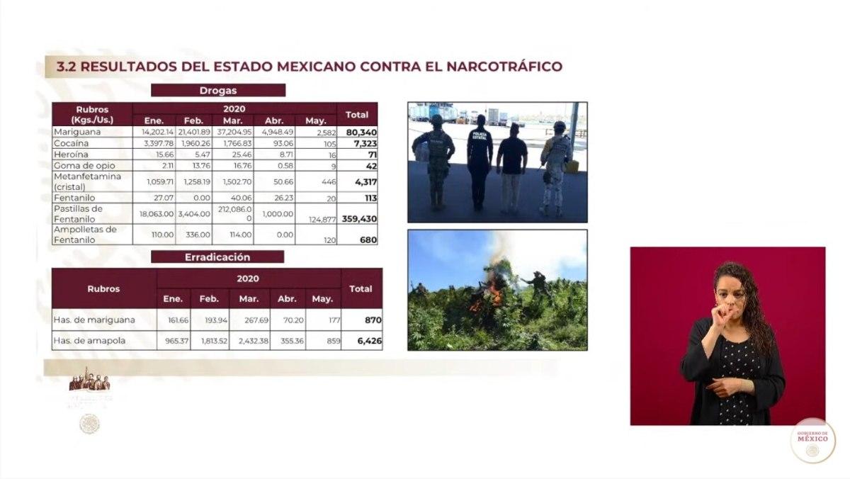 Resultados del Estado mexicano contra el narcotráfico (Foto: Gobierno de México)