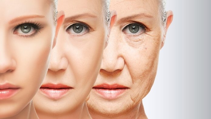 El investigador cree que en 17 años se podrán realizar tratamientos para extender la vida de manera significativa (iStock)