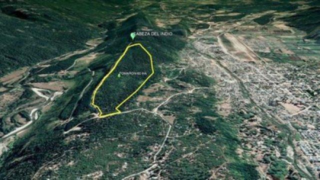 El territorio que es objeto de disputa en la localidad de El Bolsón.