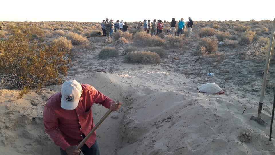 La fosa fue hallada cerca de Puerto Peñasco (Foto: Madres buscadoras de Sonora)