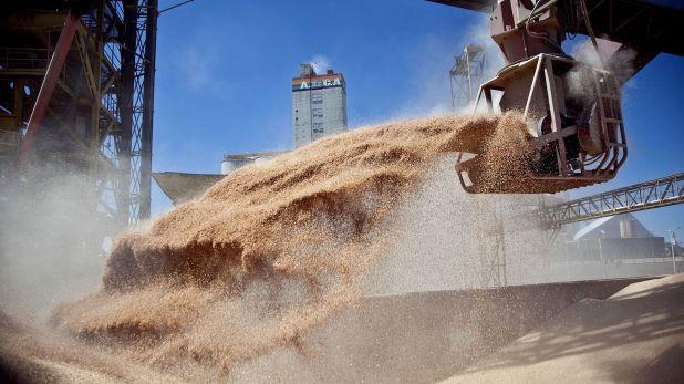 Mejoran los valores brutos de la cosecha de verano y por ende se incrementan los ingresos por las exportaciones  (Télam)